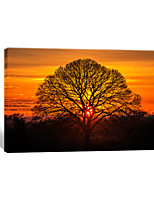 VISUAL STAR®Natural Scenery Canvas Printing Art Winter Tree Wall Painting Sunset Stretched Canvas