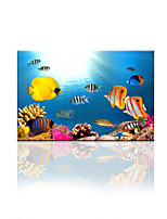 VISUAL STAR®Ocean World Canvas Printing Art Fish Wall Picture Art Ready to Hang