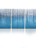 VISUAL STAR®Winter Scenery Stretched Canvas Painting Art For Home Decoration