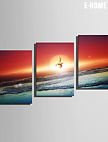 E-HOME® Stretched Canvas Art Birds That Fly By The Sea Decoration Painting Set of 3