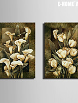 E-HOME® Stretched Canvas Art White Flower Decorative Painting Set of 2