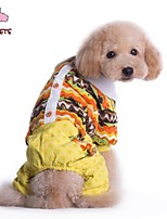 FUN OF PETS® Colouful Costume Coat with Pants for Pets Dogs (Assorted Sizes and Colours)