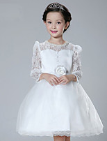 2015 NEW Wedding Party Formal Flower Girls Dress baby Pageant dresses