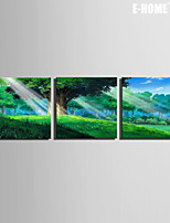 E-HOME® Stretched Canvas Art Green Forest Decorative Painting Set of 3
