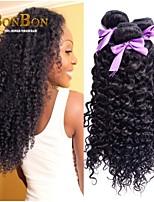 3pcs/lot  Fashion Brazilian Virgin hair Kinky Curly Wave