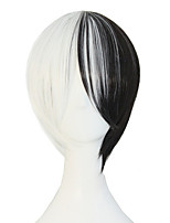 Anime Hot Style High Quality Temperature Silk Black and White and Double Color Wig