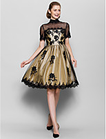 A-line Mother of the Bride Dress - Black Knee-length Short Sleeve Tulle