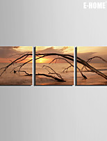 E-HOME® Stretched Canvas Art The Dead Sea Decorative Painting Set of 3
