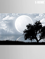 E-HOME® Stretched Canvas Art Big Moon And Tree Decorative Painting One Pcs
