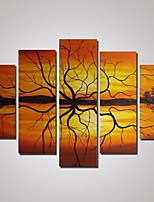 5 Panels Abstract Sunset and Tree Branches Oil Painting on Cavnas Unframed