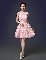 Brautjungfernkleid - Rosa / Rot / Champagner Tülle - A-Linie - mini - Juwel-Ausschnitt