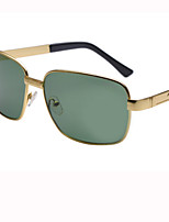 100% UV400 Hiking Sunglasses