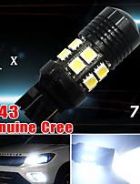 7443 Cree blanco bombillas poder más elevado 7w cola conducido freno inverso 7440 7444na 992