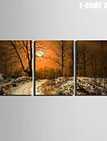 E-HOME® Stretched Canvas Art The View of The Moon Decorative Painting Set of 3