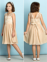 Knee-length Lace Junior Bridesmaid Dress - Champagne A-line V-neck