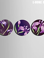 E-HOME® Stretched Canvas Art Purple Lily Decoration Painting  One Pcs