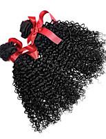Peruvian Curly Hair Weaving Extensions 7A Natural Color Virgin Human Hair 2 Bundle Peruvian Top Quality 100g/pcs