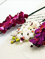 Silk / Plastic Orchids Artificial Flowers 2pcs/set
