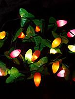 Christmas 2.5m Fruit Multi-mode Decorative Lights(220v)
