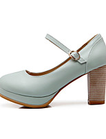 Women's Shoes Leatherette Chunky Heel Heels Heels Outdoor / Dress / Casual Blue / Pink / Beige