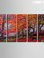 E-HOME® Stretched Canvas Art The Leaves of Trees Decorative Painting Set of 5