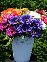 Multicolored Daisy Sunflower Plant Simulation