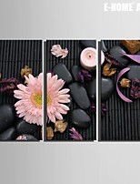 E-HOME® Stretched Canvas Art Black Stones And Flowers Decoration Painting Set of 3