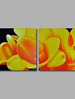 Hand-Painted Oil Painting on Canvas Wall Art Modern Flowers Yellow Egg Flowers Home Deco Three Panel Ready to Hang