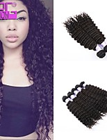 Kinky Curly Human Hair Weaving Virgin Brazilian Human Hair Extension In Stock