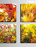 E-HOME® Stretched Canvas Art Large Leaf Plants Decoration Painting  Set of 4