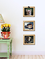 Set of 3 Lovely Cat Wall Stickers Art Decals