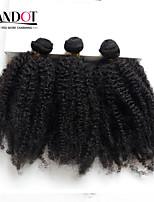 3pc veel Peruaanse afro kinky krullend maagd haar 100% menselijk haar weave bundels Peruaanse curly hair extensions natuurlijke zwart