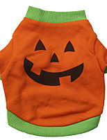 Chat / Chien Costume / T-shirt Orange Printemps/Automne Halloween Cosplay / Mode / Halloween, Dog Clothes / Dog Clothing-Other