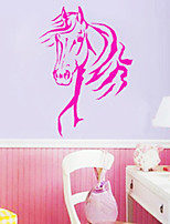 Animals / Fashion Wall Stickers Plane Wall Stickers , PVC 66cm*46cm