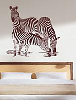 Animals / Fashion Wall Stickers Plane Wall Stickers , PVC 61cm*58cm