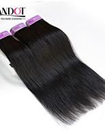Porción 3pc extensiones de cabello negro naturales 8-30