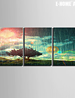E-HOME® Stretched Canvas Art A Tree Decorative Painting Set of 3