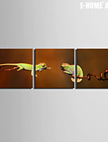E-HOME® Stretched Canvas Art Two Color Dragon Decoration Painting  Set of 3