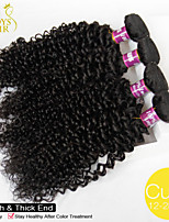 4Pcs Lot Cambodian Virgin Hair Deep Curly Wave 100% Human Hair Weave Cambodian Kinky Curly Hair Extensions Natural Color