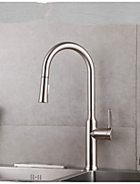 Kitchen Faucet Contemporary Pullout Spray / Pre Rinse Brass Nickel Brushed