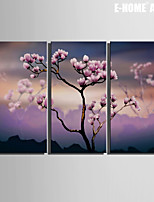 E-HOME® Stretched Canvas Art Pink Flower Decoration Painting Set of 3