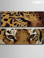 E-HOME® Stretched Canvas Art Leopard And Tiger's Eye Decoration Painting  Set of 2