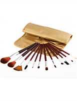 Monsia® 3 Colors Makeup Brushes Set 12Pcs with Bag