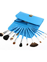Monsia® 5 Colors Makeup Brushes Set 11Pcs with Bag