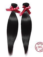 EVET Hair Products Malaysian Virgin Hair Straight 2Pcs Malaysian Straight Virgin Hair Remy Human Hair Weave Bundles