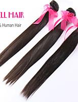 6A Peruvian Virgin Human Hair 3 Bundles Straight Hair