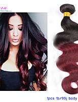 Ombre Hair Extensions 100g/piece Malaysian Body Wave 1B/99J Ombre Malaysian Hair Human Hair Weave Bundles