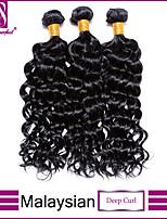 profunda virginal del pelo rizado malasio lía barato malasio enrollamiento profundo 100% la armadura del pelo enrollamiento profundo