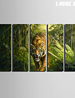 E-HOME® Stretched Canvas Art  Tiger in The Forest Decoration Painting  Set of 5