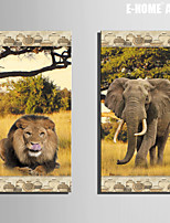 E-HOME® Stretched Canvas Art Lion And Elephant Decoration Painting  Set of 2